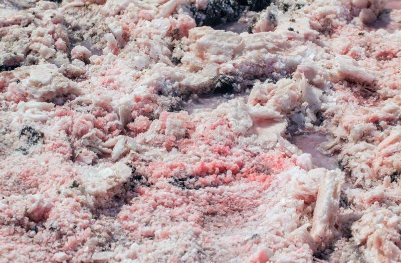 Соль, рассол и грязь розового озера стоковые изображения