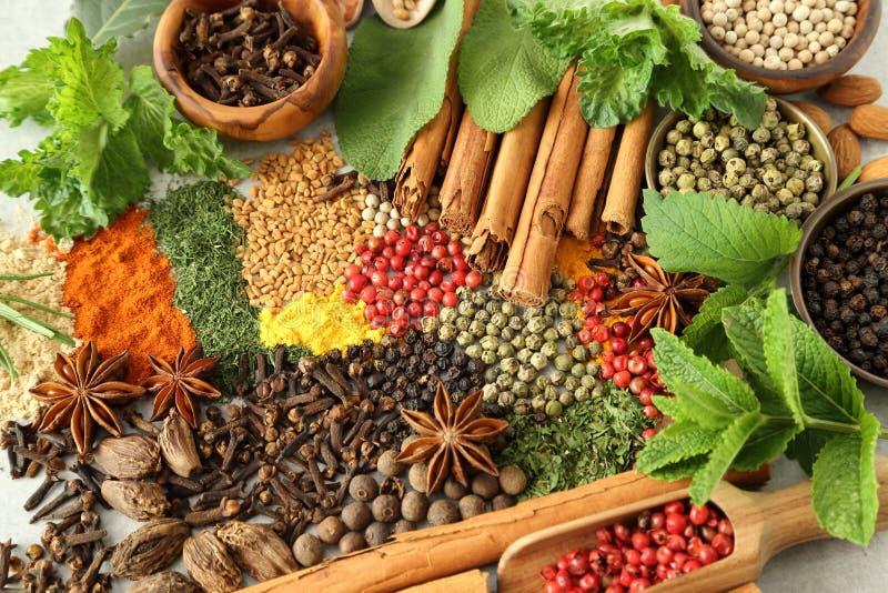соль rosemary перца листьев трав чеснока cardamon залива spices ваниль стоковое фото