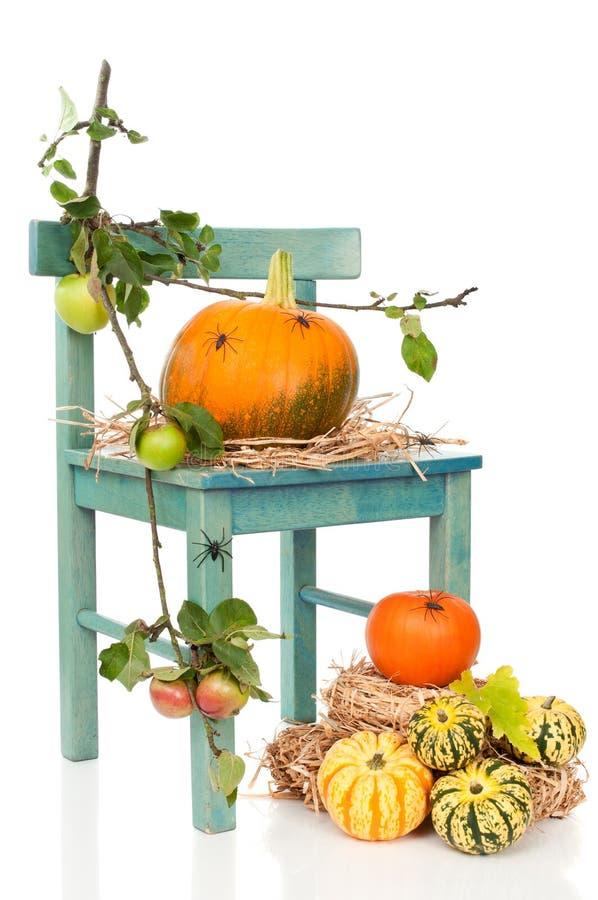 спайдеры тыквы halloween стула стоковая фотография