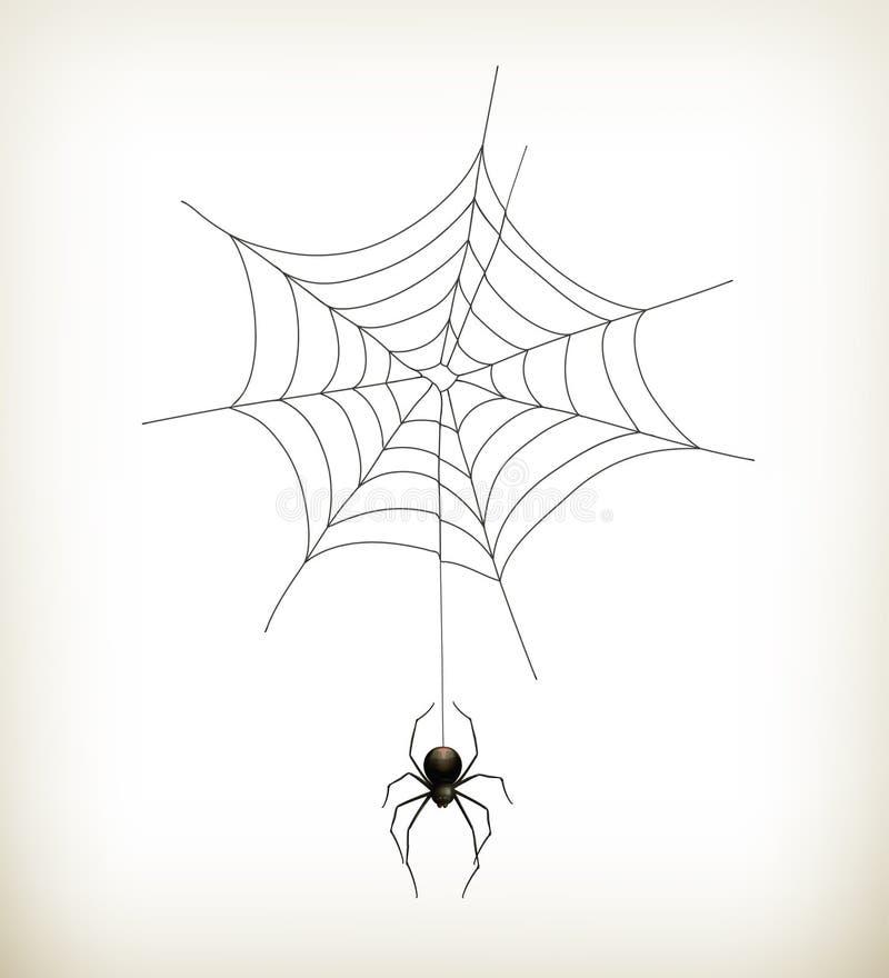 Спайдер и сеть иллюстрация вектора