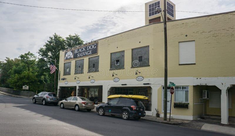 Спасение имущества черной собаки, Roanoke, Вирджиния, США стоковое изображение rf