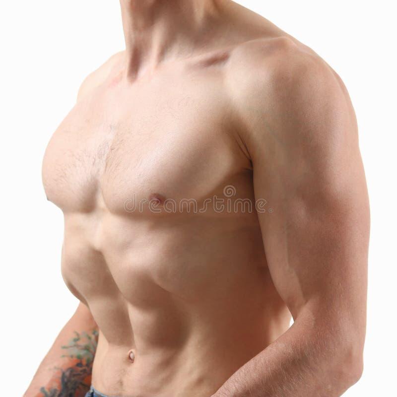 Спасибо прессы ` s сильных людей диета и постоянн тренировка стоковое изображение rf