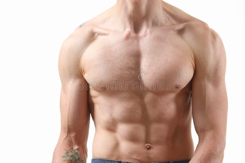 Спасибо прессы ` s сильных людей диета и постоянн тренировка стоковая фотография