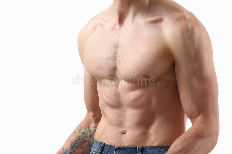 Спасибо прессы ` s сильных людей диета и постоянн тренировка стоковое фото rf