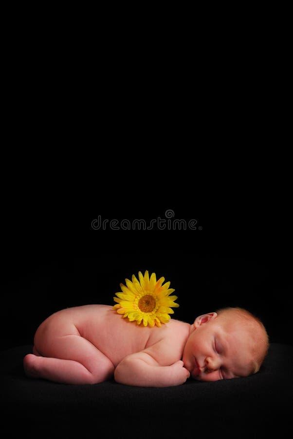 спать младенца стоковая фотография
