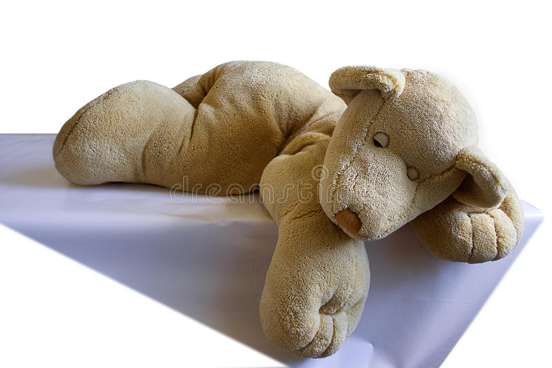 спать плюша новичка медведя стоковое фото