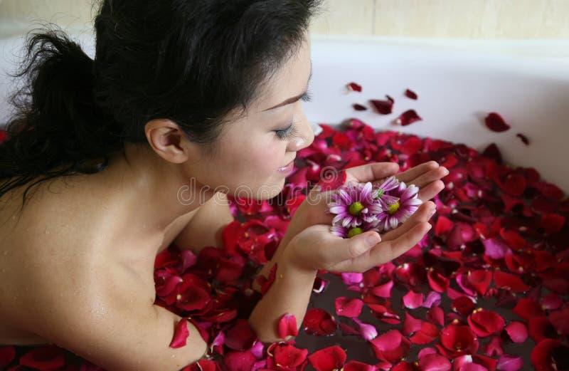 спа лепестка розовая стоковые изображения rf
