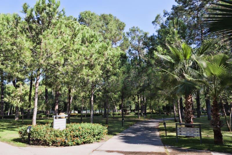 Спа-отель Paloma Forest Resort & Spa расположен в парке города Шади. стоковая фотография