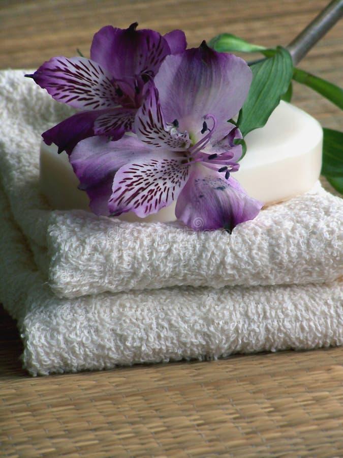 Download спа продуктов стоковое изображение. изображение насчитывающей курорт - 480419