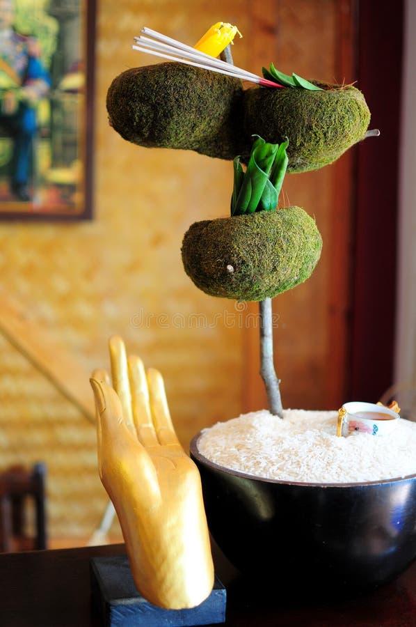 спа руки Будды стоковые фото