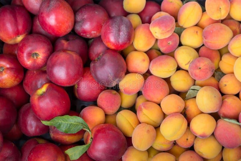 спелые сладкие нектарины; персики и абрикосы на стойке на рынке стоковая фотография