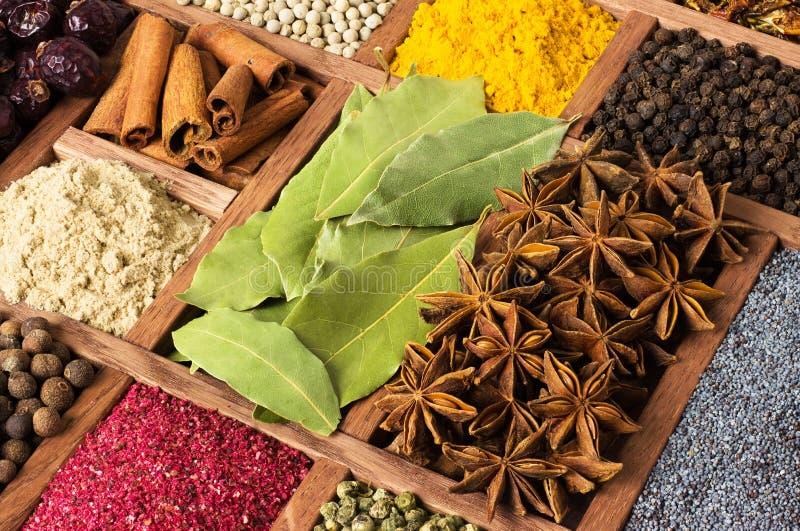 Специи и травы в коробке на рынке в Азии Конец-вверх приправами как предпосылка стоковое фото