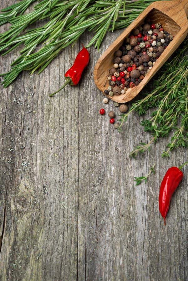 Специи и травы на деревянной предпосылке (и космосе для текста) стоковая фотография