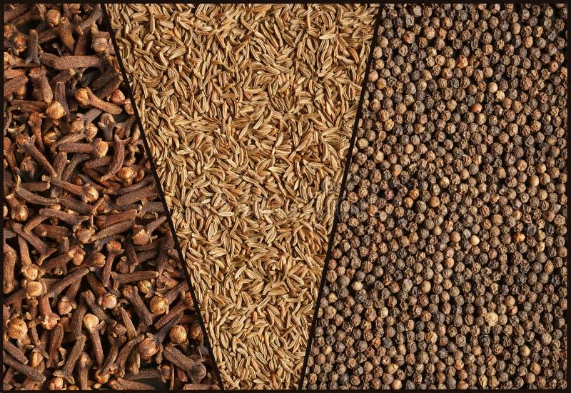 Специи, коллаж. Тимон, гвоздичные деревья и черный перец. стоковое изображение rf