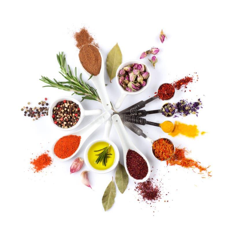 Специи, травы и condiments стоковая фотография rf