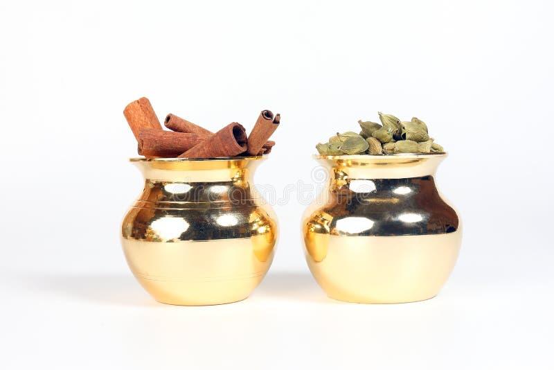 Специя кардамона циннамона в сияющем баке металла стоковые фото