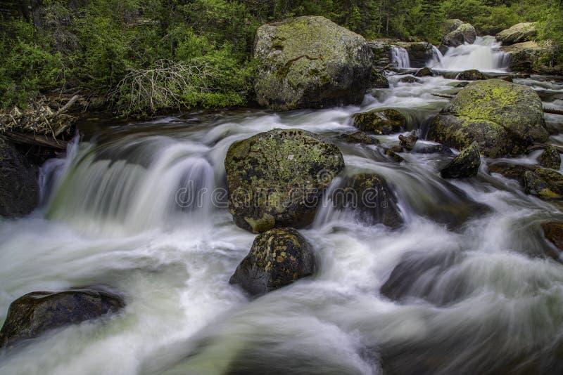 Спеша поток горы Колорадо стоковые изображения