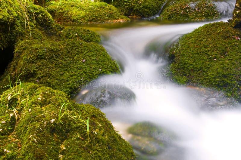 спешя воды стоковое изображение rf
