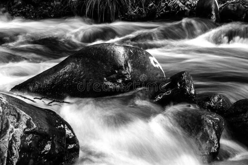 Спешя вода стоковое изображение