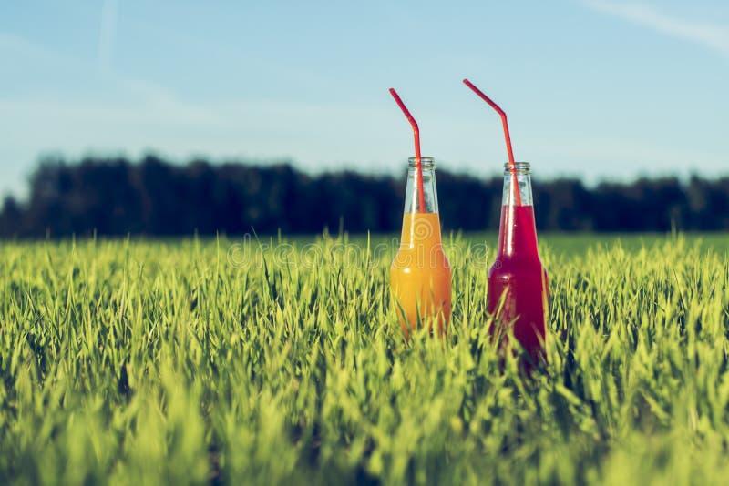 Спиртная партия напиток Coctails красный и оранжевый свежий в бутылках стоя в траве лета с соломой стоковое изображение rf