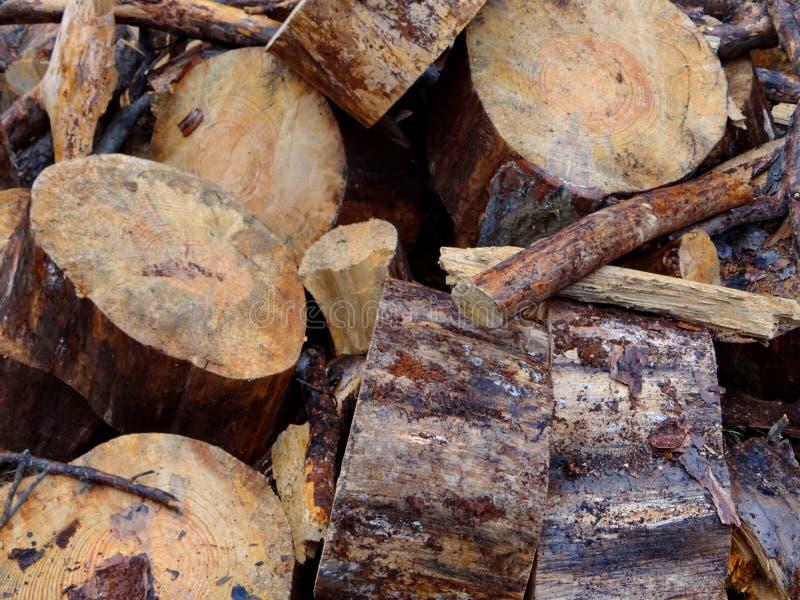 спиленная древесина стоковое изображение rf