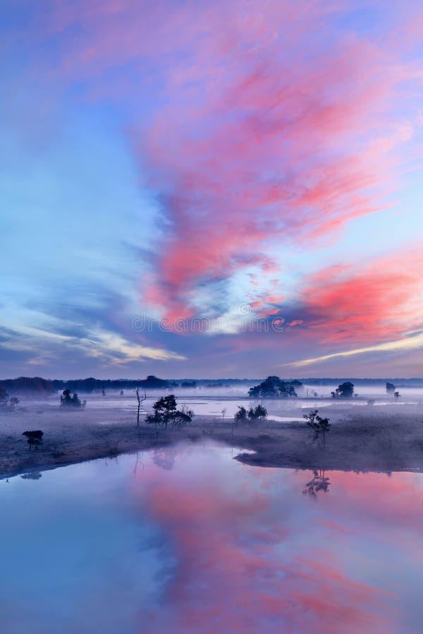 Спокойная влажная земля на красочном рассвете стоковое фото