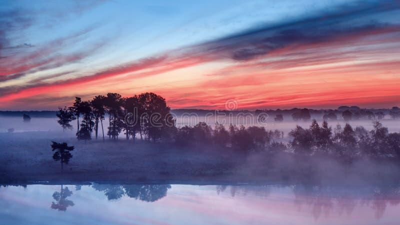 Спокойная влажная земля на красочном рассвете стоковые фотографии rf