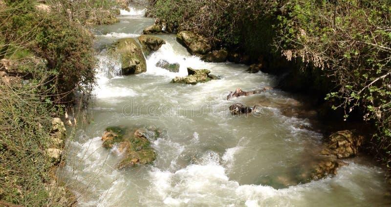 Спокойная вода стоковые изображения