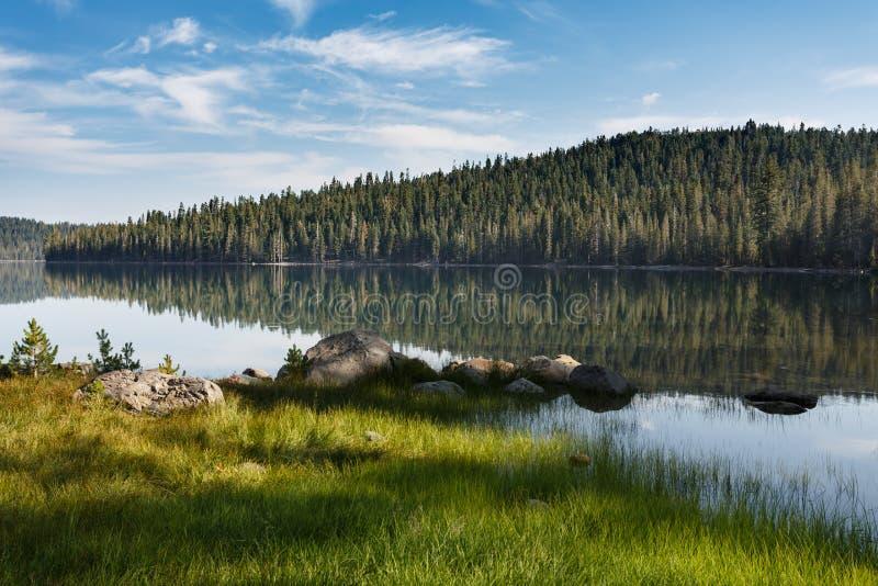 Спокойная вода отражает деревья на яркий солнечный день на высокогорном озере в национальном парке Lassen вулканическом стоковые изображения