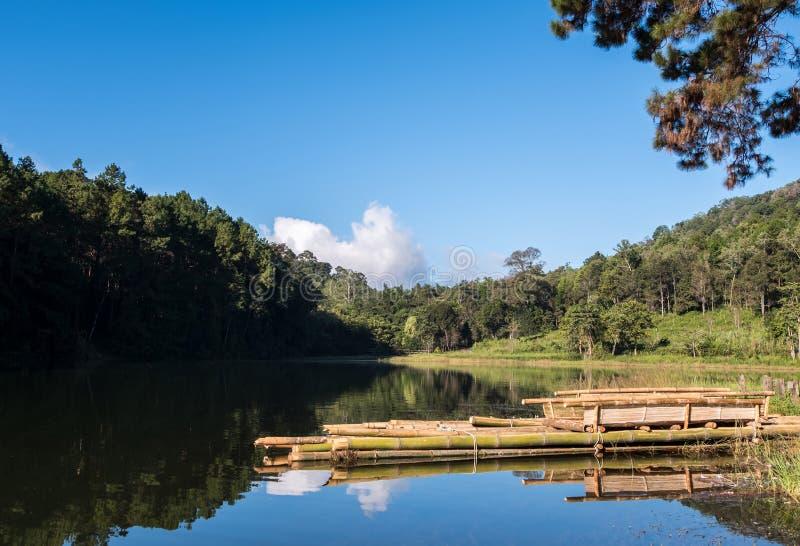 Спокойное озеро с деревянным сплотком стоковые фото