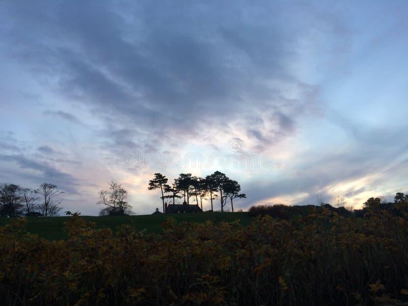 Спокойное waterski стоковые изображения