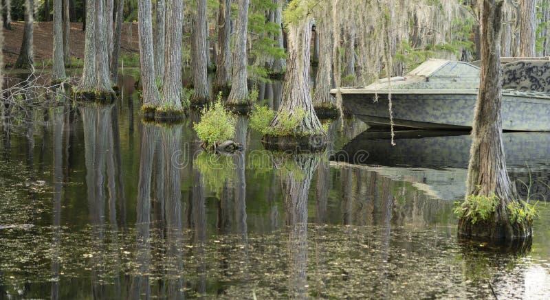 Спокойные кипарисы глубокая Южная Георгия США болота озера стоковое изображение