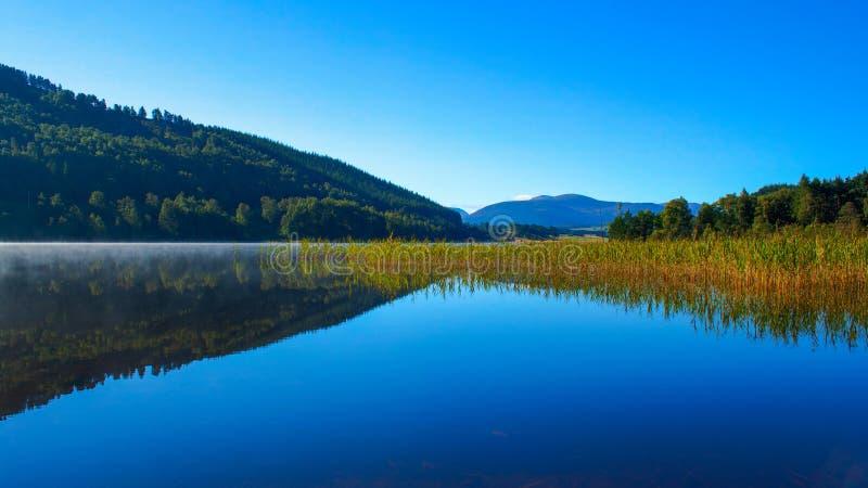 Спокойные отражения на воде с пейзажем стоковые фото