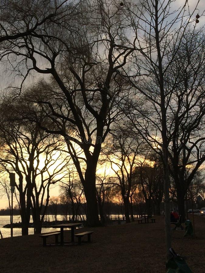 Спокойный вечер в парке Len Форда в Торонто стоковые фото