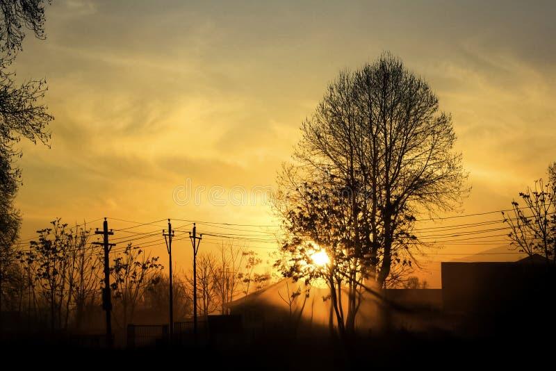 Спокойный восход солнца стоковое фото rf