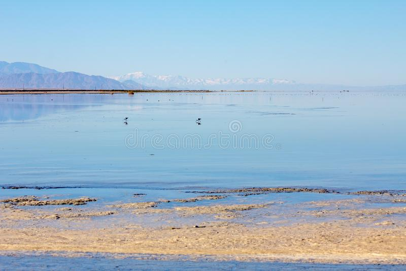 Спокойный ландшафт моря Солтона в пастельных син и пинках, CA стоковая фотография rf