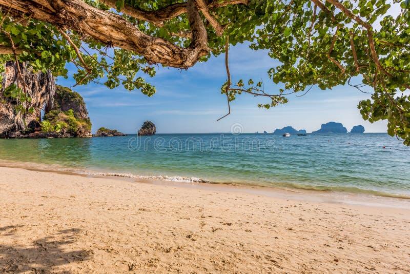 Спокойный пляж Railay в Krabi, к югу от Таиланда стоковые изображения rf