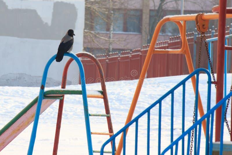 Спортивная площадка детей в зиме, качаниях и carousels под снегом на солнечный день отсутствие людей, пустой области, ждать стоковое фото rf