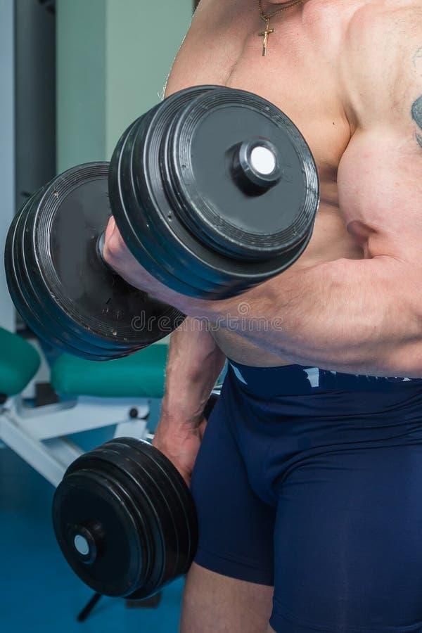 Спортсмен в спортзале стоковое изображение rf