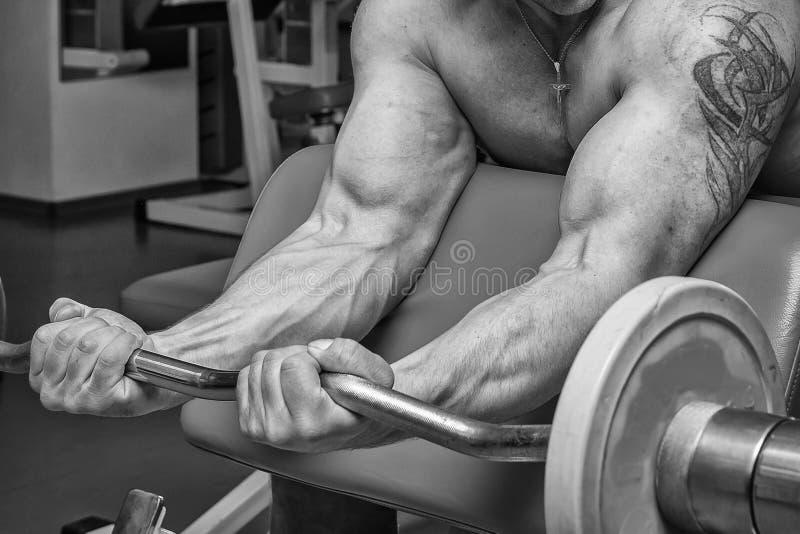 Спортсмен в спортзале стоковые изображения rf