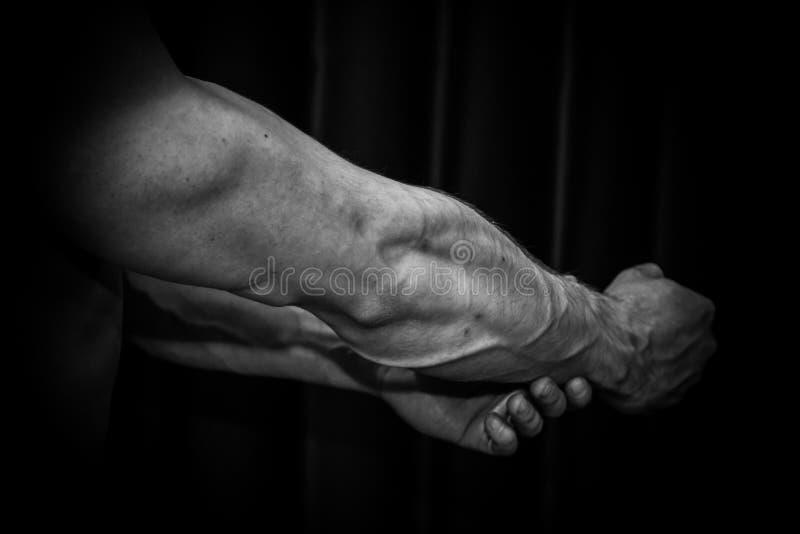 Спортсмен показывает нагнетенный конец-вверх руки на черной предпосылке занимаясь культуризмом г-н Олимпия стоковое фото