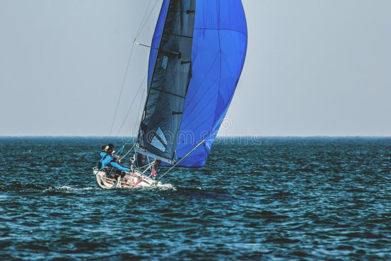 Спорт плавают на яхте с экипажем под полными ветрилами стоковое фото