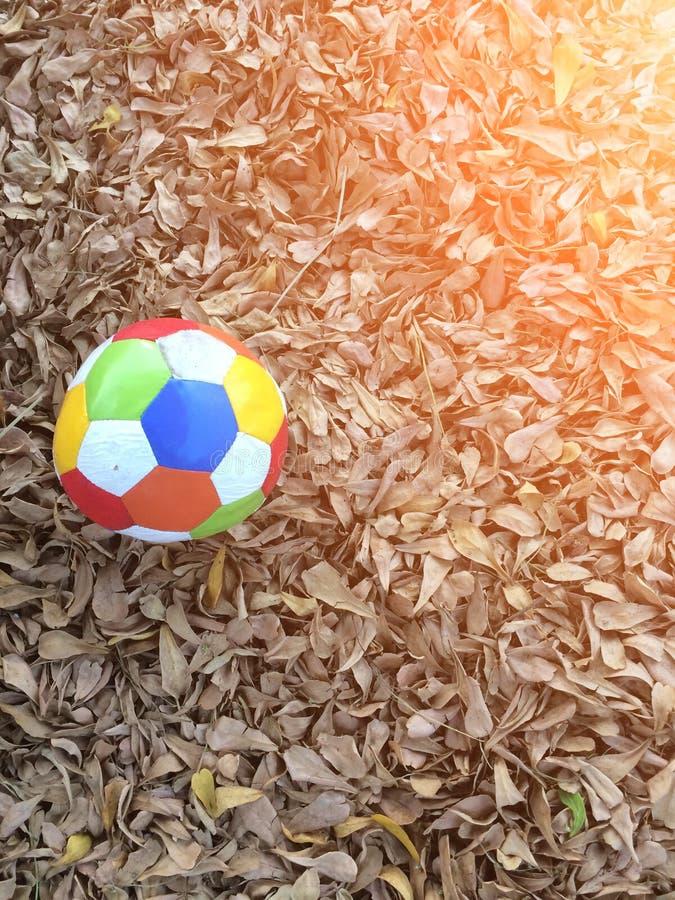 Спорт футбола стоковые фотографии rf