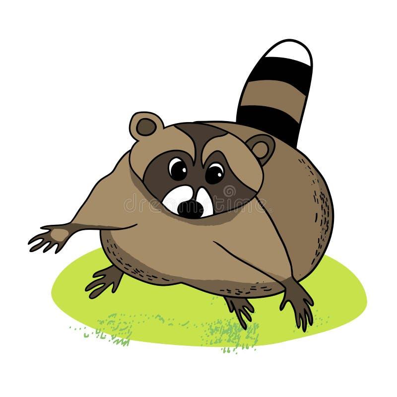 Cartoon raccoon vector illustration
