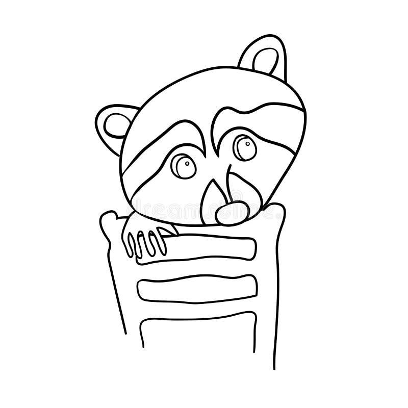 Cartoon raccoon stock illustration