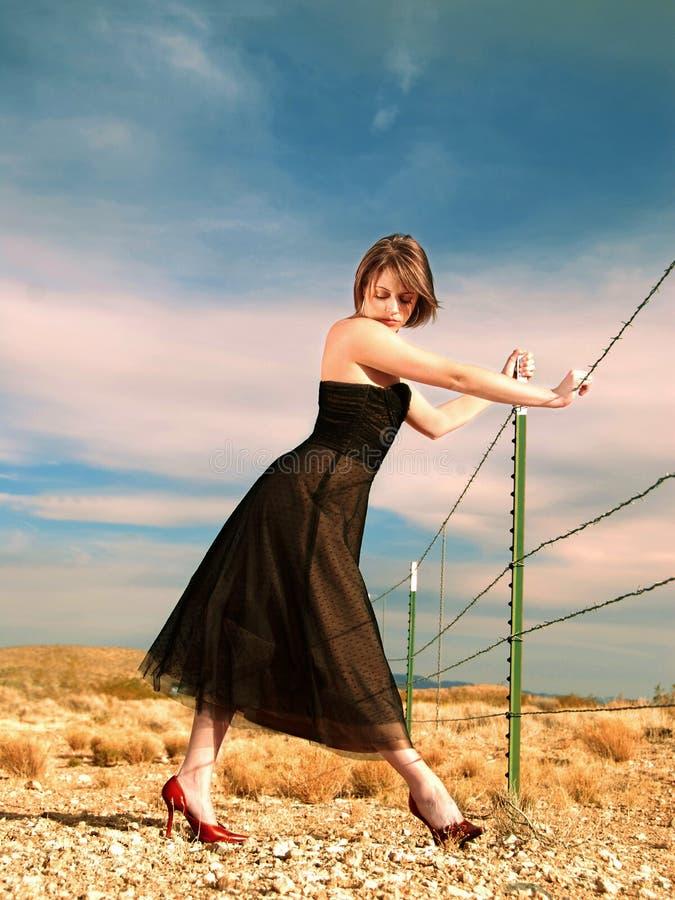 способ пустыни стоковые фото