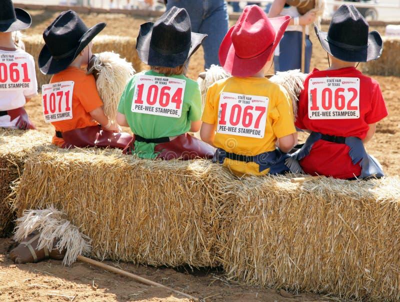 справедливые stampeders peewee заявляют texas стоковое фото rf