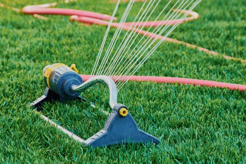 Спринклер лужайки распыляет воду над зеленой травой стоковое фото