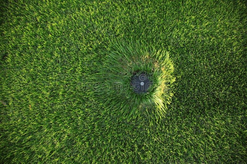 спринклер лужайки стоковое фото rf