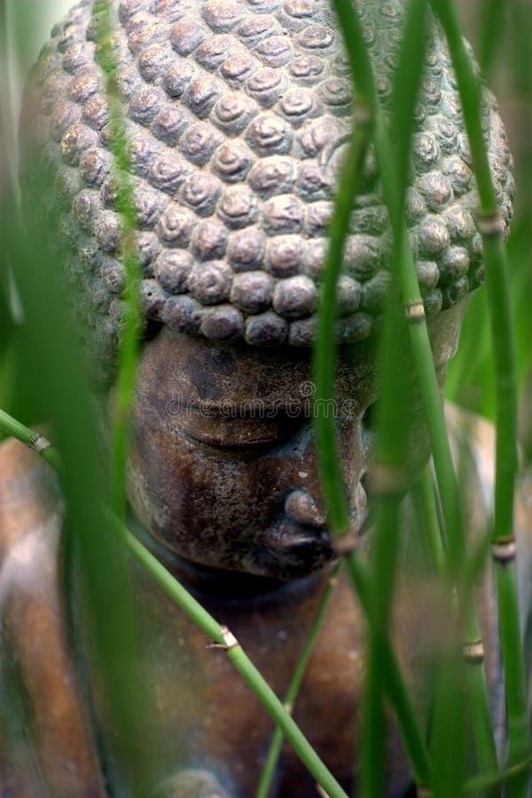 Спрятанная статуя стоковые изображения rf